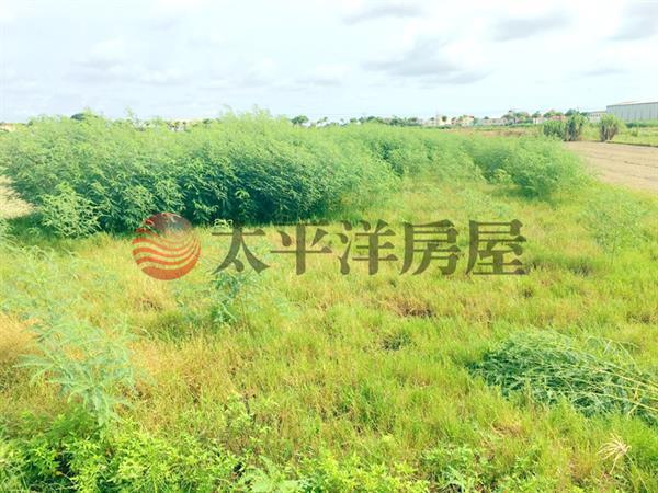 佳里龍安段田地